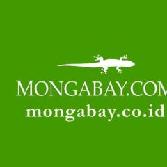 Mongabay