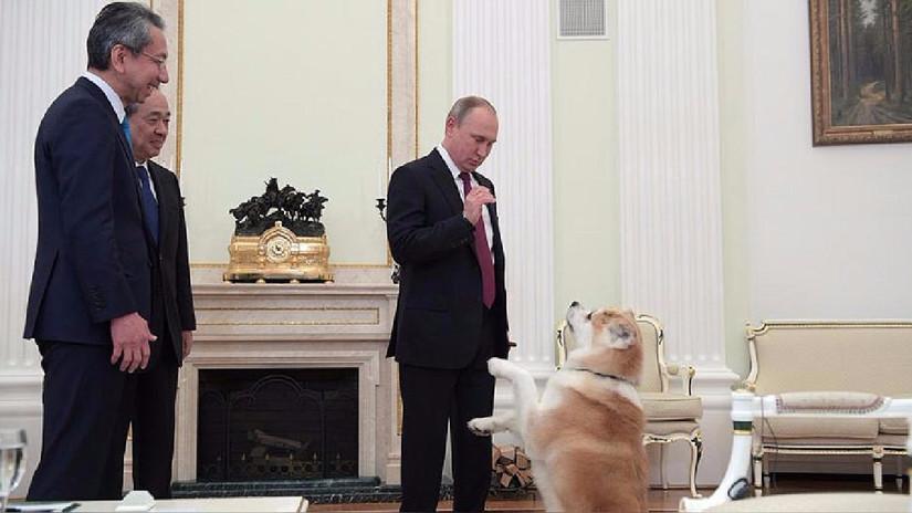 Conoce a las mascotas de los presidentes y líderes mundiales