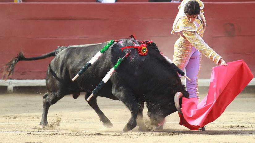 Demanda contra la corrida de toros: estas son las claves de la ponencia del TC que la declara infundada