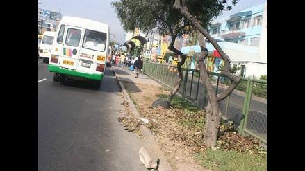 Cierran avenida de La Peruanidad para cobrar parqueo