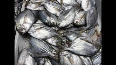 Aceites omega 3 del pescado no frenan el Alzheimer, según un estudio
