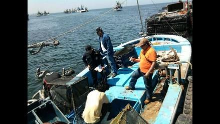 Piura: Decomisan cerca de 4 mil kilos de anguila capturada ilegalmente