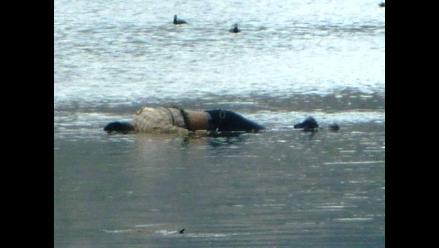 Chiclayo: Encuentran cuerpo de obrero que murió ahogado en canal Taymi