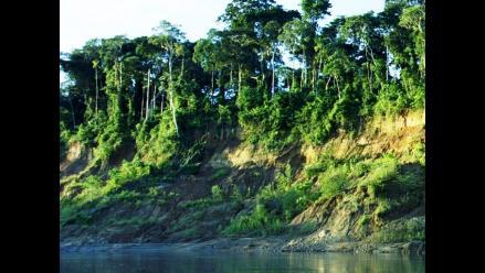 Cusco: Promueven investigación y conservación del Manu