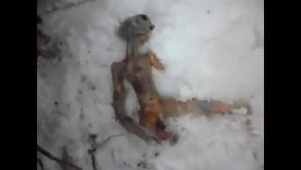 Difunden imágenes de supuesto extraterrestre en Rusia
