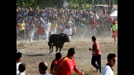 Buscan a toro que hirió a cuatro personas en España