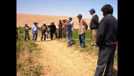 Puno: Agricultores en contra del ingreso de semillas transgénicas