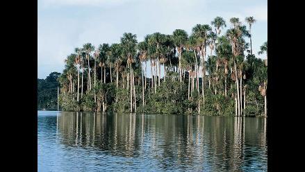 Madre de Dios: Invaden zona de amortiguamiento del Parque del Manu