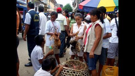 Yurimaguas: Se duplica el precio de las gallinas regionales
