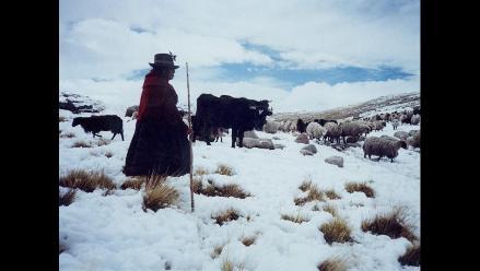 Apurímac: Heladas y fuertes vientos afectan la provincia de Grau