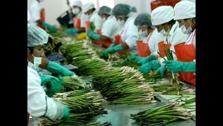 Junín: Productos agrícolas lideraron exportaciones en el 2010