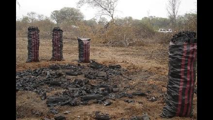 Decomisan 35 toneladas de carbón de algarrobo en Lambayeque