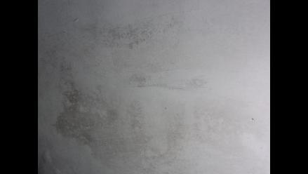 Las alergias producidas por el moho y la humedad