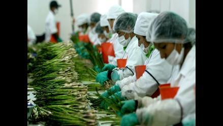 Agroindustria y metalmecánica preparadas para incrementar salario mínimo