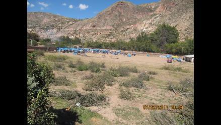 Cusco: Talan 588 árboles frutales usados en investigación científica