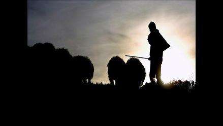 Demandan  interés de gobierno sobre caso de ovejeros  peruanos en los EEUU