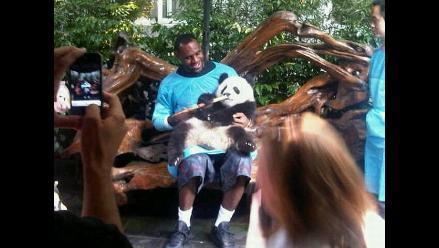 LeBron James se divierte con los pandas en China