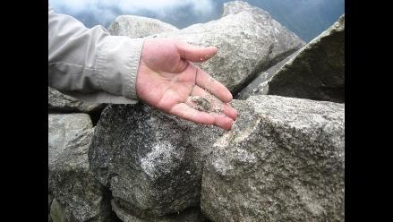 Cusco: Unas 47 variedades de líquenes existen en Machu Picchu