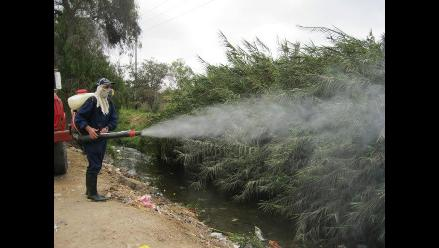 Chiclayo: Erradican roedores y mosquitos que afectaban a 150 familias