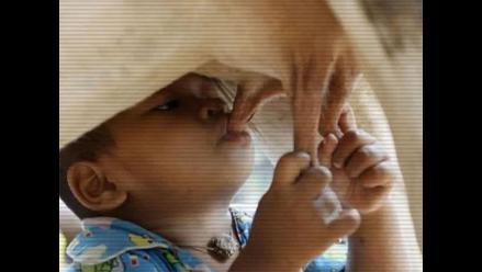 Niño camboyano toma leche directamente de la ubre de una vaca