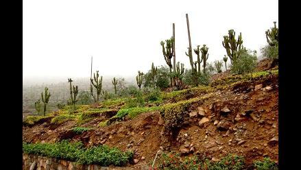 Prohibirán edificaciones en laderas de cerros de La Molina