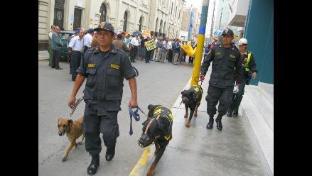 Darán de baja a seis perros de la Policía Canina en Chiclayo