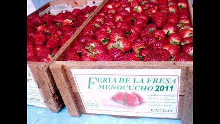 Trujillo: Invitan a la VIII Feria Regional de la Fresa en Menocucho