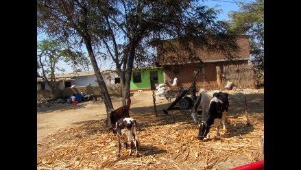 Lambayeque: Lucha contra la pobreza debe priorizarse en zonas rurales