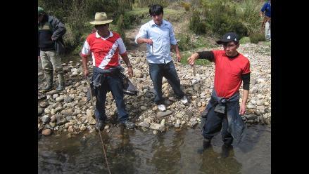 La Libertad: Mueren más de 7 mil truchas de piscigranja en Quiruvilca