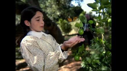 Olive, el primer largometraje filmado enteramente con un celular