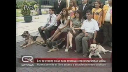 Aprueban ley de perros guías para personas con discapacidad visual