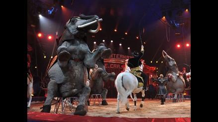 Mónaco: Así se inauguró el 36 Festival Internacional de Circo