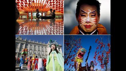 Conozca las diversas celebraciones por el Año del Dragón