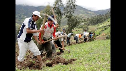 Conveagro propone limitar propiedad de tierras en costa, sierra y selva