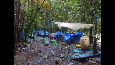 Ayacucho: Decomisan 3 toneladas de hoja de coca en La Mar