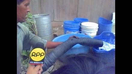 Cobertura de agua en el Perú por debajo del promedio latinoamericano