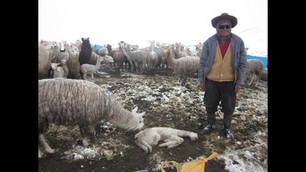 Puno: 30 familias afectadas por lluvias y nevadas en Ocuviri