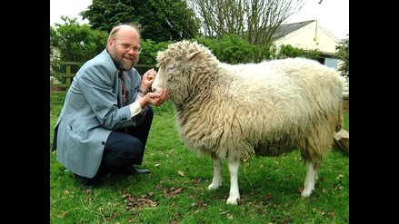 Se cumplen quince años del anuncio de clonación de la oveja Dolly