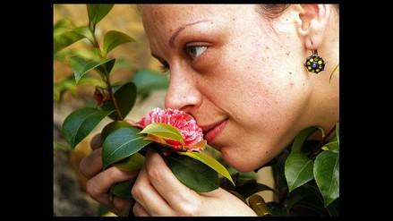 Los olores se perciben mejor con los ojos abiertos