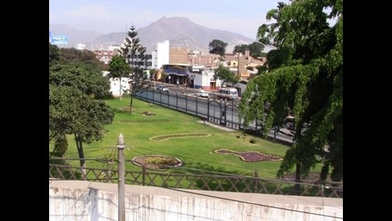 Trujillo: Vecinos denuncian presencia de murciélagos en un parque