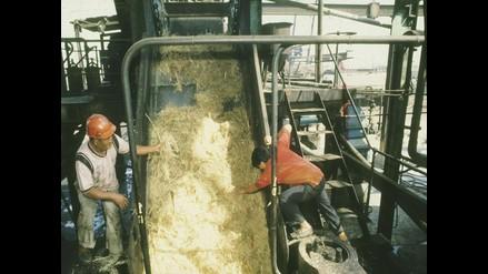 ProInversión iniciará la entrega de acciones a trabajadores de azucareras