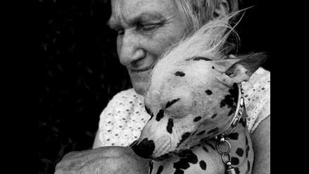 ´El perro desnudo´: Una exposición sobre la relación del hombre y los animales