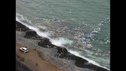 Miraflores retira 15 toneladas de basura de sus playas