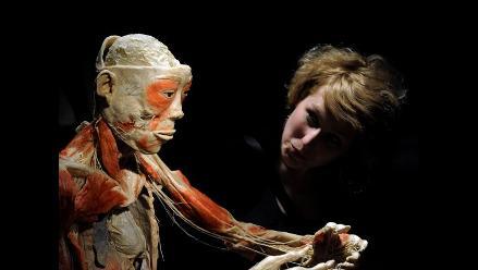 Nueva técnica permite ver el cuerpo humano en todo su esplendor