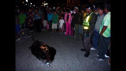Mujer muere tras impactar moto con ómnibus interprovincial en Huaral