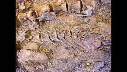 Hallan 1.200 peces de la época faraónica