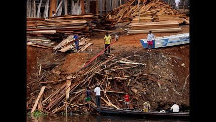 Empresas exportan madera ilegal desde Perú a Estados Unidos, según ONG
