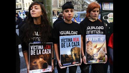 Defensores de los animales se levantan contra Rey de España