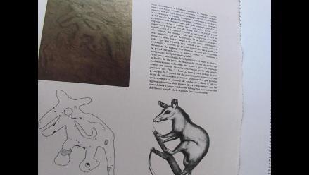 Lambayeque: Descubren imagen de zarigüeya en mural de Ventarrón