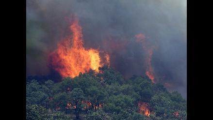 Incendio consume 500 hectáreas de bosque en Jalisco